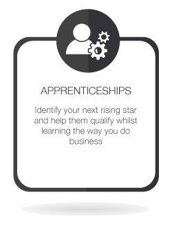 Legal Apprenticeships