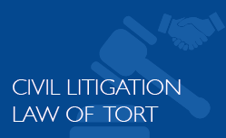 Civil Litigation - Law of Tort