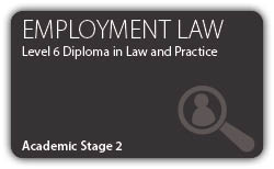 Employment  - Professional Higher Diploma